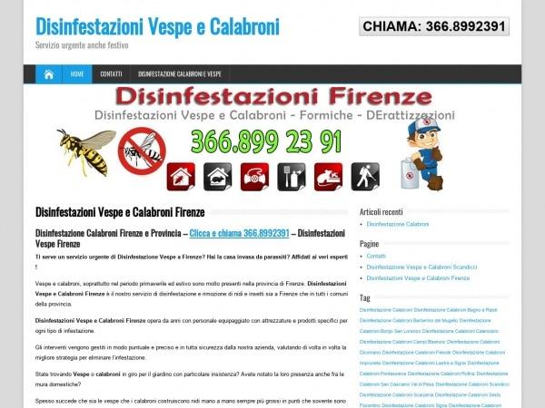 Disinfestazione calabroni Firenze